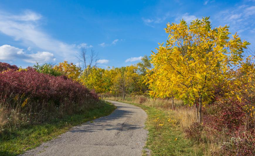 Hamilton Rail Trail